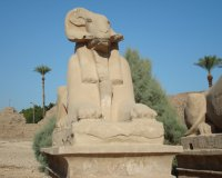 Египет. Луксор. 2009